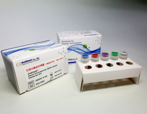 DiaPlexQ™ Novel Coronavirus (2019 nCoV) Detection Kit_3